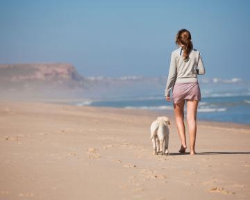 stabile Mensch-Hund Beziehung II 2