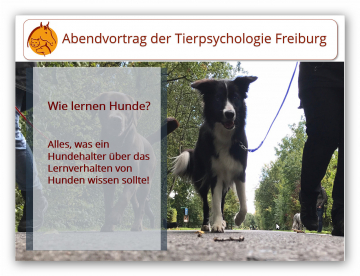 Vortrag Wie lernen Hunde