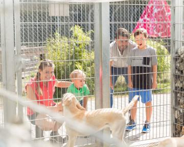 Beratung vor Hundekauf 1